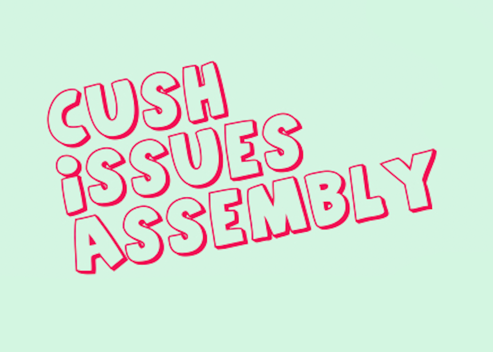 Cush Issues Assembly Graphic